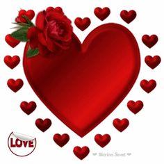 ❤ Love 。♥‿♥。