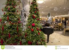 department store mall shopping christmas tree ligh editorial stock photo image of design lights 35910653