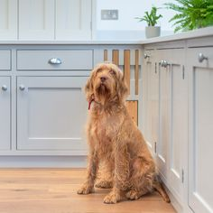 ILANGA KITCHEN | Shere Kitchens - beautiful kitchens handmade in Shere Guildford Surrey White Wood Kitchens, Handmade Kitchens, Bespoke Kitchens, Kitchen Decor, Kitchen Ideas, Diy Desk, Beautiful Kitchens, Surrey, Cleaning Hacks