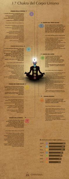 Chakra infografica