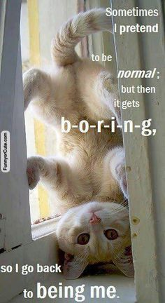 Sometimes I Pretend To Be Normal: But Then It Gets B-O-R-I-N-G, So I Go Back To Being Me.