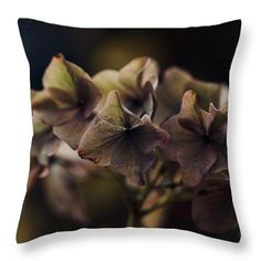 Winter withering Throw Pillow for Sale by Helen Kelly