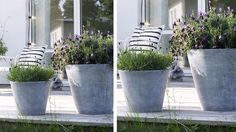 grands pots fleurs zinc terrasse