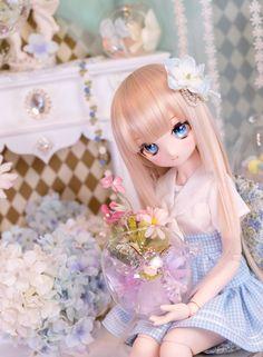 Twitter Anime Girl Dress, Anime Art Girl, Anime Dolls, Bjd Dolls, Pretty Dolls, Beautiful Dolls, Barbie Diorama, Kawaii Doll, Disney Princess Pictures