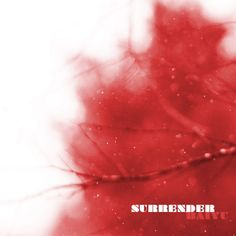 """New Music: Baiyu """"Surrender"""" @baiyumusic- http://getmybuzzup.com/wp-content/uploads/2013/10/Baiyu_Surrender_October-600x600.jpg- http://getmybuzzup.com/new-music-baiyu-surrender-baiyumusic/-  Baiyu """"Surrender"""" Here's a new track from Baiyu titled """"Surrender"""". This track is produced byGrand Staff & mastered byKevin Odom.   Let us know what you think in the comment area below. Liked this post? Subscribe to my RSS feed and get loads more!&#8"""