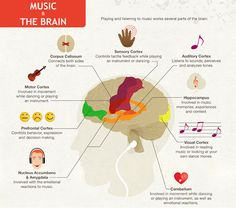 Music to the Brain