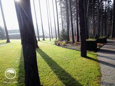 Les Garden Paths, Bronze, Landscape Architecture, Plants, Plant, Planets, Landscape Design, Landscape Art