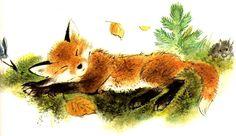 sleepy fox - so cute!