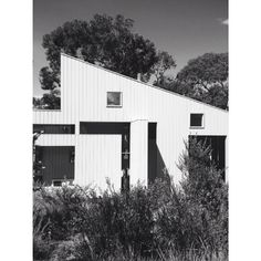 Anonymous beach pad - composed and layered #anglesea #beach #house #nativeplants by marwin_sim http://ift.tt/1KosRIg
