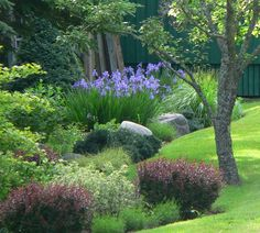 Stepping Stones, Maine, Gardening, Outdoor Decor, Plants, Home Decor, Homemade Home Decor, Garten, Flora