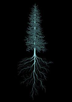 Xray tree by JoshuaDunlop on DeviantArt