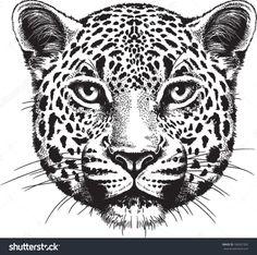 jaguar face drawing - Google Search