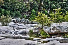 Les Piscines naturelles de Cavu : La Corse comme vous ne l'avez jamais vue - Linternaute