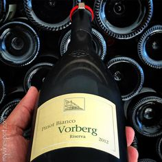 Terlano 2012 Vorberg Pinot Bianco: This is a single vineyard wine produced from Pinot Bianco grown at feet above sea level. Fragrant notes of spring flowers and orchard fruit are. Italian Wine, Fruit, Drinks, Bottle, Drinking, Beverages, Flask, Drink, Jars