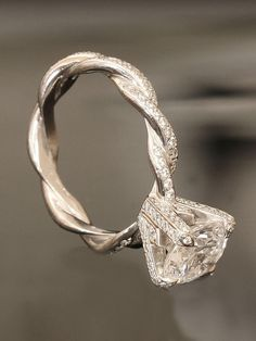 what a dropdead gorgeous ring! *swoon* check out all the tiny diamonds all over and the intertwining band!