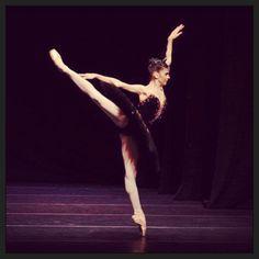 Mayara, black swan