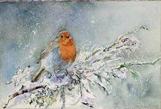 Advent, Advent ein Lichtlein brennt (c) Aquarell von Frank Koebsch | Ein Wintergruß (c) Aquarell mit einem Rotkehlchen von Hanka Koebsch