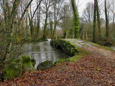 Ribadelouro, Pontevedra #CaminodeSantiago #CaminoPortugués