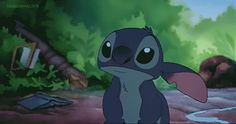 Stitch ...He's not fat! He's fluffy!!! And I LOVE him that way!! :D I LOVE STITCH! :D