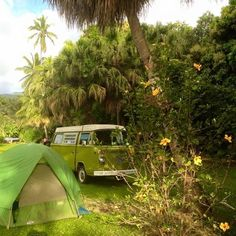 Liked on InstaGram: Throwback to #camping in #hana 2 years ago with my bestie! Can't wait for our next adventure! #dowhatyoulove #luckywelivemaui #808 #paradise #maui #vwgirl #vwlife #volkswagen #aircooled #vwgirl #westy #westfalia #stillmymancrush