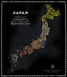 FOOD MAPS - The World seen by the origin of food by  Henry Hargeaves - Japan