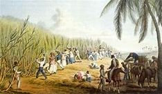 slaves in brazil in rio de janeiro - Yahoo Image Search Results