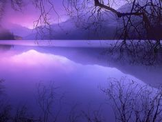 National Parks Pictures - Purple Haze over Lake Crescent, Olympic National Park, Washi - National Parks Wallpapers Purple Haze, Shades Of Purple, Purple Sunset, Periwinkle, Lilac Sky, Soft Purple, Magenta, Adelia Prado, Banff National Park
