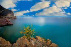 Photo The colors of Liguria by Pier Luigi Saddi on 500px