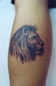 section you can find photos and the Simple Lion Tattoo Set. The lion ...