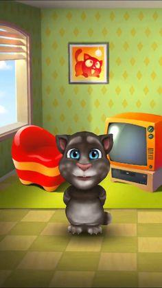 Mau cica boldog születésnapot kíván!