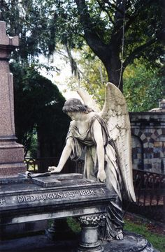 Who knew a gravesite could be so beautiful. Savannah, Ga.                                                                                                                                                                                 More