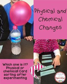 Is it a physical change or a chemical change? Great question to investigate! Kids experiment, sort situation cards, and then experiment again. Great Study!