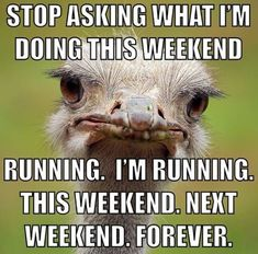 Stop asking what i'm doing this weekend. Running. I'm running this weekend. Next weekend. Forever.