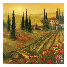 Art Fronckowiak Poppies of Toscano I Landscapes Europe Italy Flowers Print 32x32