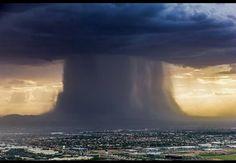 How Phoenicians monsoon 2016