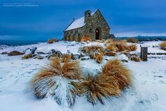 Church in New Zealand Lake Tekapo, New Zealand Landscape, Deep Art, Falling From The Sky, The Good Shepherd, Background S, Travel Pictures, My Images, The Good Place