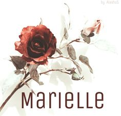 Marielle / Französisch: bitter - f Cute Baby Girl Names, Unique Baby Names, Pretty Names, Cute Names, Baby Names And Meanings, Names With Meaning, Name Inspiration, Character Inspiration, Southern Baby Names