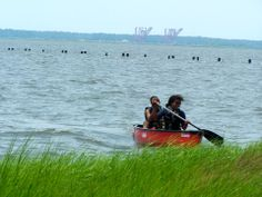 Canoeing can be a great leisure sport here at Fort Fisher Air Force Recreation Area.