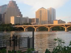 """Bat bridge"" Austin"