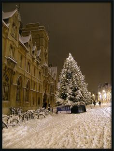 White Christmas in Oxford. Broad Street.