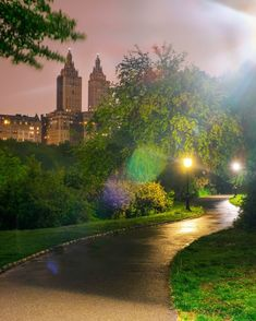 Central Park Summer Night time Pathway lit up by street lamps. With nature vibes. Central Park, Empire State Building, Centre Commercial, Pathway Lighting, Street Lamp, Buy Frames, Summer Nights, Pathways, Night Time