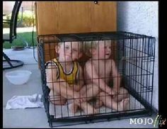 Worst Parenting Fails Ever - Bing Images Parenting Fail, Parenting Humor, Punishment For Kids, Time Out Chair, True Confessions, Wtf Moments, Save The Children, Video New, Stupid People