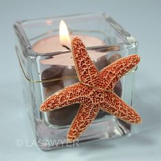 Beach Wedding Tealight Candle Accent    This tealight candle is decorated with natural pebbles and a dried, natural sugar starfish. Perfect for a beach wedding or luau party theme. For more information, please visit our profile to find the link to our company website.