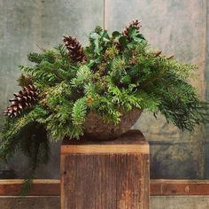 "Evergreen Trough. 10""h x 20""w. $34. #holiday"