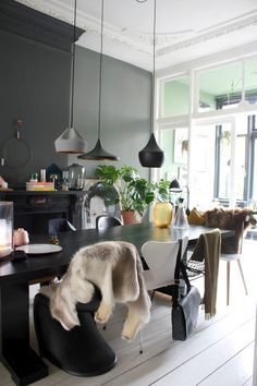THE NICE STUFF COLLECTOR INTERIOR BLOG INTERIEUR BLOG THEO-BERT POT