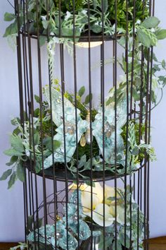 LADY MADONNA'S (WEDDING AND EVENT PLANNER AND RENTALS); Yankton, South Dakota.  We have MANY items available for rent, including three different styles of Bird Cages; including our Floor-Standing Bird Cage (50 inches tall; 11 inches wide).  RENTAL PRICE OF BIRD CAGE (without decorations):  $8.00.  AVAILABLE QUANTITY:  6.  RENTAL PRICE OF THIS BIRD CAGE WITH THESE DECORATIONS:  $25.00.  For more information, please visit our page on FACEBOOK.COM, or call us at:  605-665-6583 or 605-665-8842.