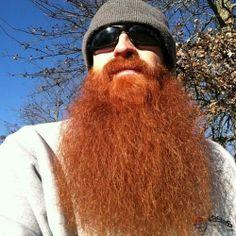 a very red beard ! Ginger Men, Ginger Beard, Hairy Men, Bearded Men, Hair And Beard Styles, Hair Styles, Red Beard, Epic Beard, Natural Redhead
