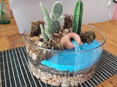 Terrario aberto Mini Cactus Garden, Cactus House Plants, Succulent Gardening, Cactus Decor, Garden Terrarium, Succulent Terrarium, Succulents In Glass, Succulents Garden, Flower Arrangements Simple