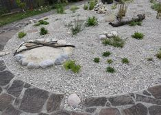 Zu Gast im Hortus Campanularum, dem Garten der Glockenblumen – Hortus Girasole Outdoor Decor, Insects, Insect Hotel, Natural Garden, Flowers
