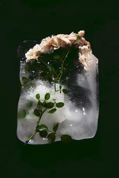 cubito de hielo con florecitas